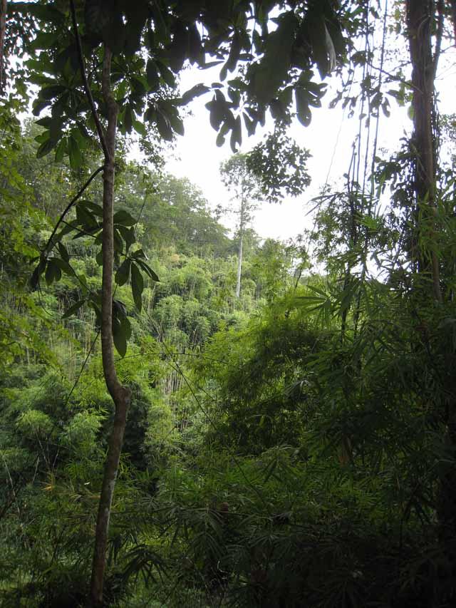 4 X 4 >> Voyage au CASCADES du Ratanakiri cambodge le Ratanakiri et ...